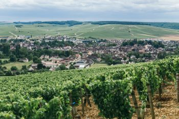 Chablis wine View of the town of Chablis, wine-growing region in central France from which Chablis wine comes from. (Northern Burgundy)