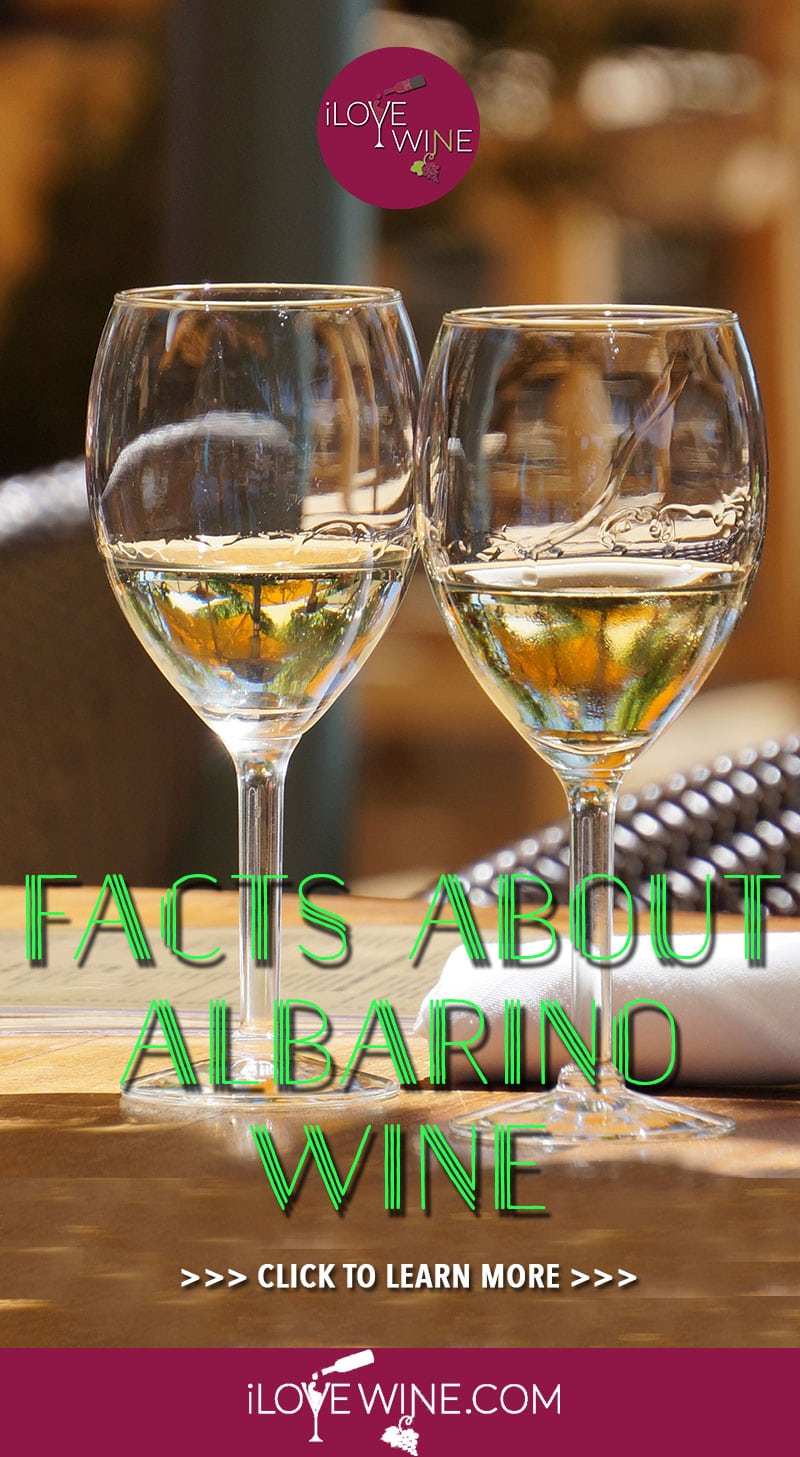 Looking to pair your seafood entree with a complimentary wine? Albarino's acidity, citrus, and dry finish are ideal for Mediterranean fare. Click here to learn all about what makes Albarino wine an exquisite choice for refined palates. Love wine | Albarino Wine | #lovewine #wine #Albarinowine