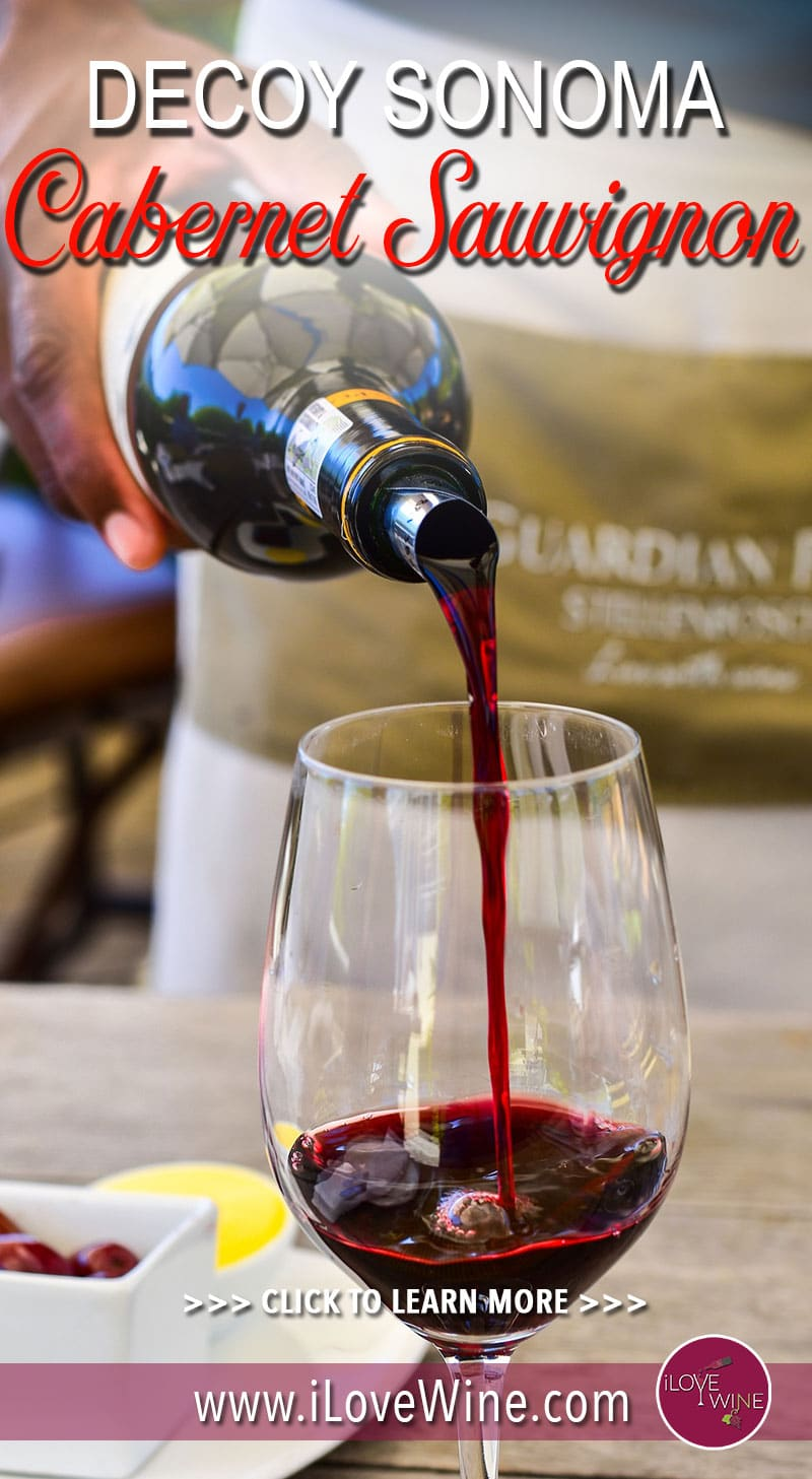 It's almost impossible not to have heard of Sonoma County's outstanding vineyards. About twice the size of Napa Valley, this vineyard produces exceptionally good Cabernet Sauvignon. Click to learn more! Love wine | Cabernet Sauvignon Wine | Decoy Sonoma Cabernet Sauvignon #lovewine #wine #CabernetSauvignon #napavalley