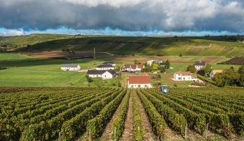 Sancerre Wine – History from the French Town